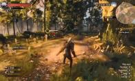 NS版《巫师3》15分钟主机模式演示:断肢溅血不要太爽
