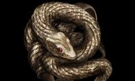 《黑暗之魂3》贪婪金蛇戒指获得方法分享