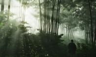 EA游戏艺术师拍摄《对马岛之鬼》美照 张张可做壁纸