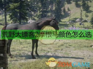 《荒野大镖客2》摩根马数据一览