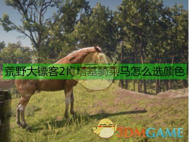 《荒野大镖客2》肯塔基骑乘马数据一览