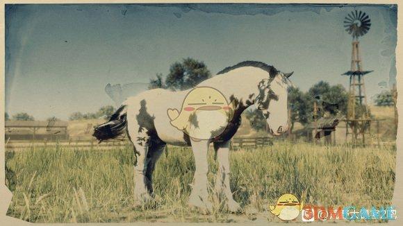 《荒野大镖客2》性价比最高的马匹