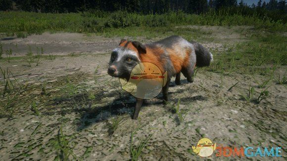 《荒野大镖客2》全线上传说动物及服装一览
