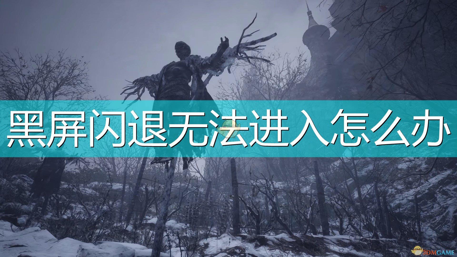 《生化危机8:村庄》无法进入游戏解决方法介绍
