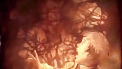 3dmgame《恶魔城:暗影之王2》超长介绍视频