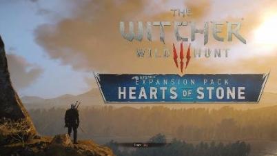 【陈踏岚】《巫师3:狂猎》DLC石之心 直播录像完结篇