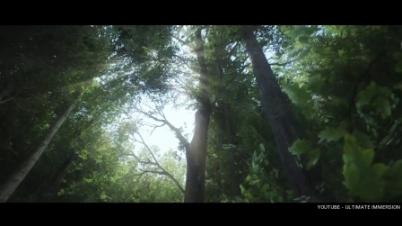 《天国:拯救》画面效果演示