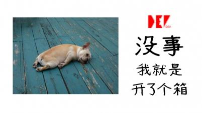 【DEV】CSGO Box Opening