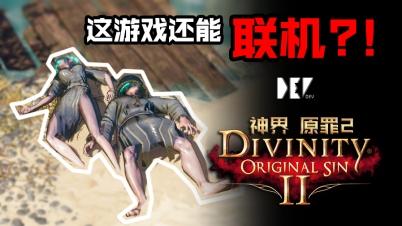 【DEV】【这游戏还能联机? !】神界 原罪2