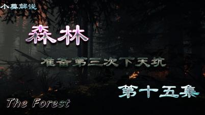 【森林】准备第三次下天坑-第十五集